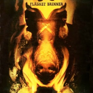 flasket_Brinner_cover
